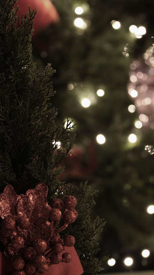 Close-up of a Christmas tree, desaturated