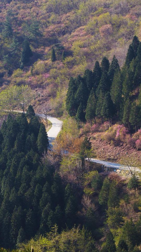 A curved road in Yeongchuisan, Yeosu, Korea