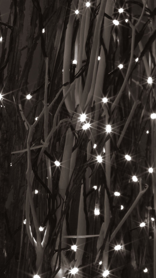 Christmas ligts on trees, sepia tone